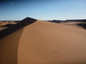 Sahara Sand Dune Photo © Rob Shephard 2010