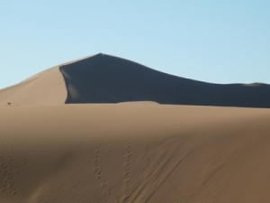 The Big Dune © Rob Shephard 2010