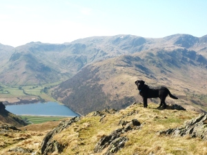 Morgan Above Brotherswater Photo © Rob Shephard