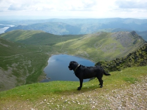 Morgan on Helvellyn Summit Photo © Rob Shephard