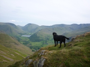 Morgan surveys brotherswater