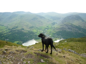 Morgan Surveys the Dale