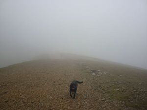 Morgan returns from Helvellyn Low Man