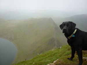Morgan Red Tarn and Striding Edge