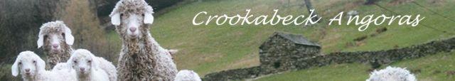 Crookabeck Angoras