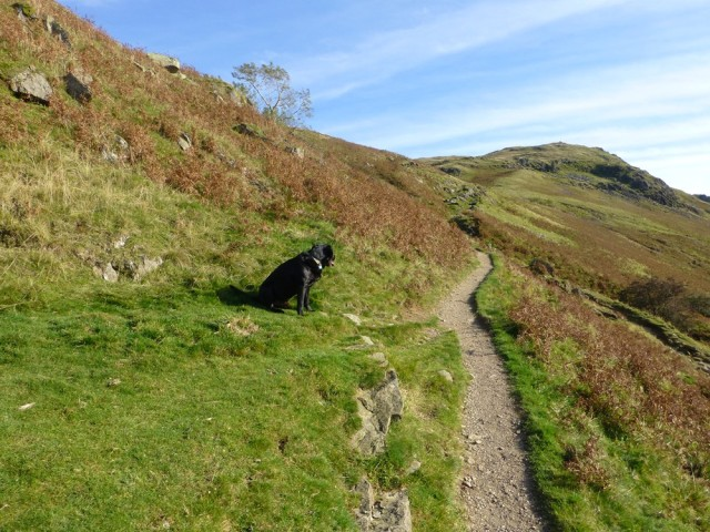 On the Way up to Boredale