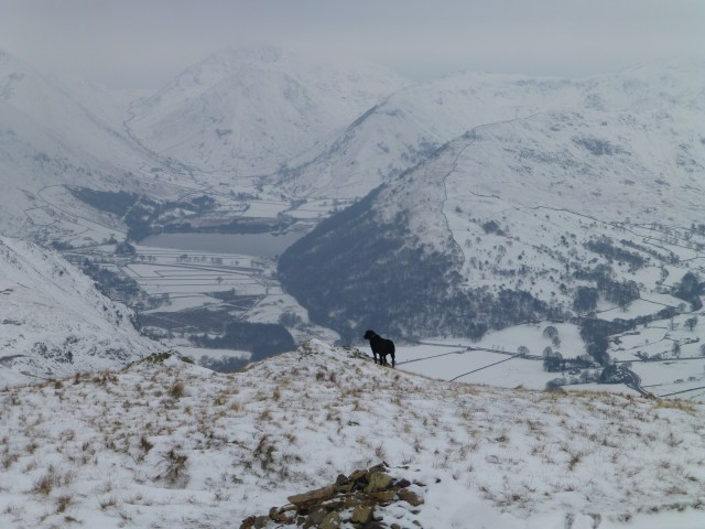 Morgan over Brotherswater