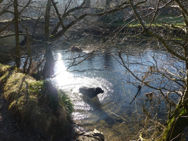Morgan rehydrates in the beck