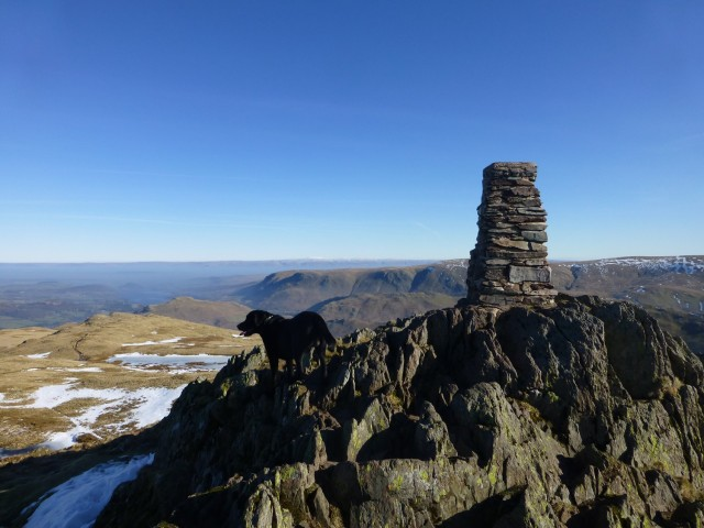 Morgan on Place Fell Summit