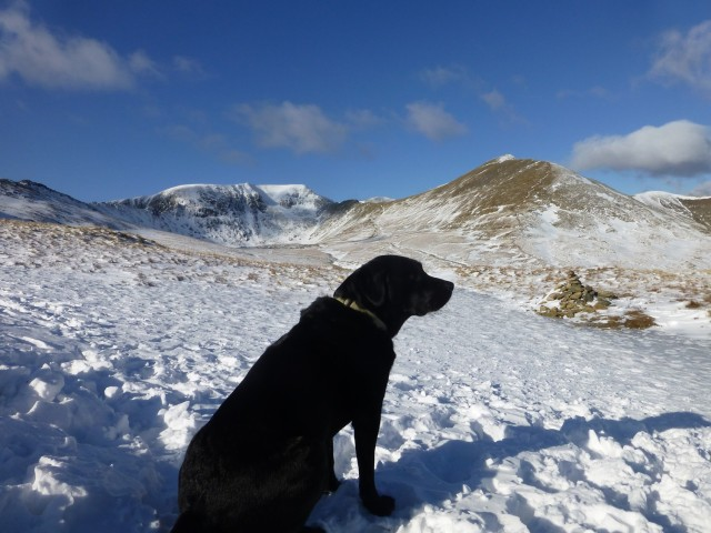Morgan and Helvellyn