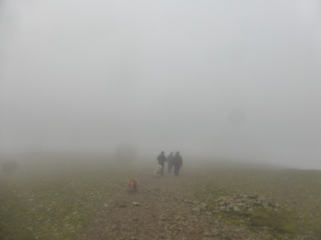 Walking in the Mist